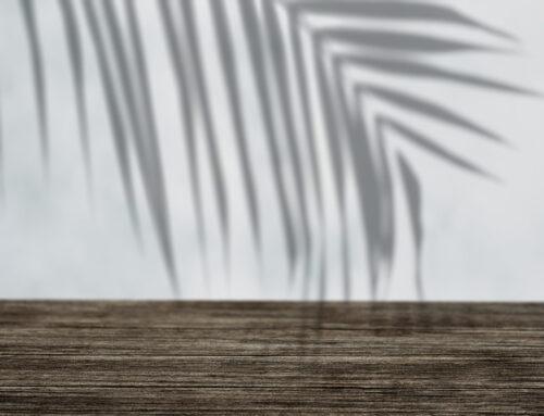 A teher alatt növő pálmáról